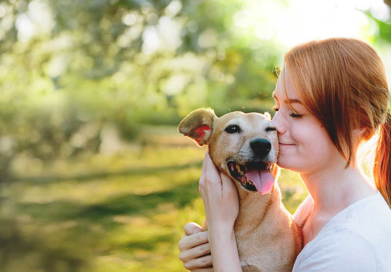 Deciding on Pet Care Pet Insurance